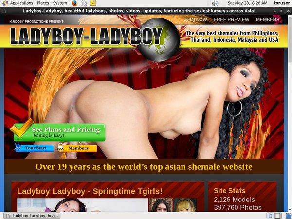Acc For Ladyboy Ladyboy