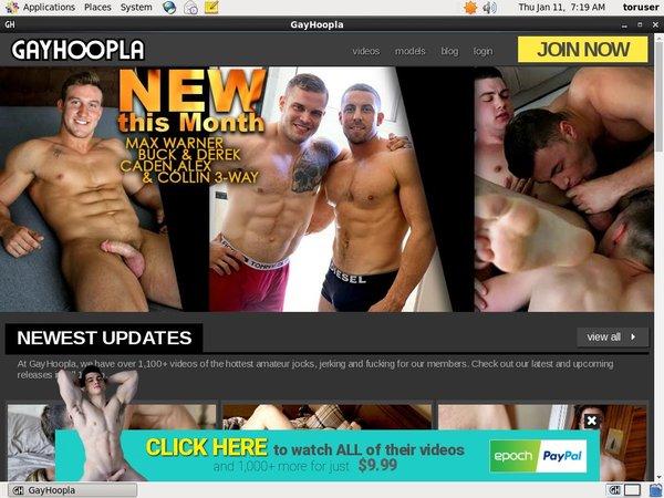 Gay Hoopla Day Trial
