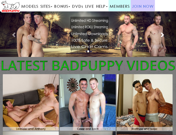 Badpuppy Full Scenes